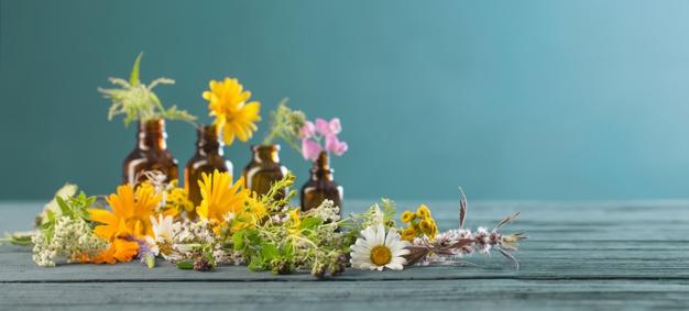 Gyógynövény-gyűjtemény ízületi gyulladásokra. A legjobb gyógynövények ízületi gyulladásra