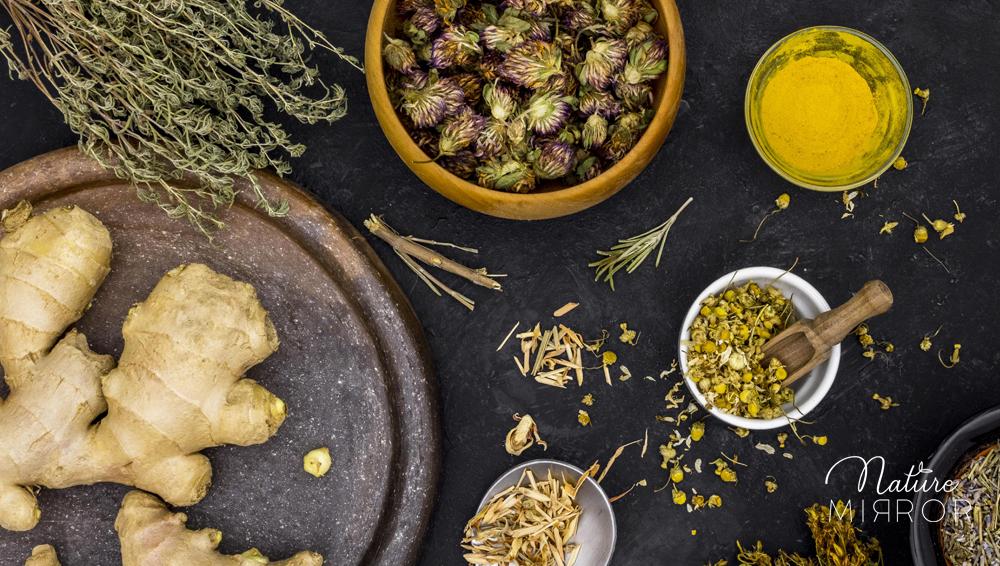 Az izomláz kezelése gyógynövényekkel